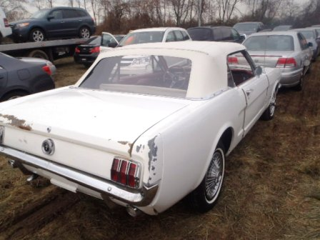 Madison : 66 mustang for sale convertible